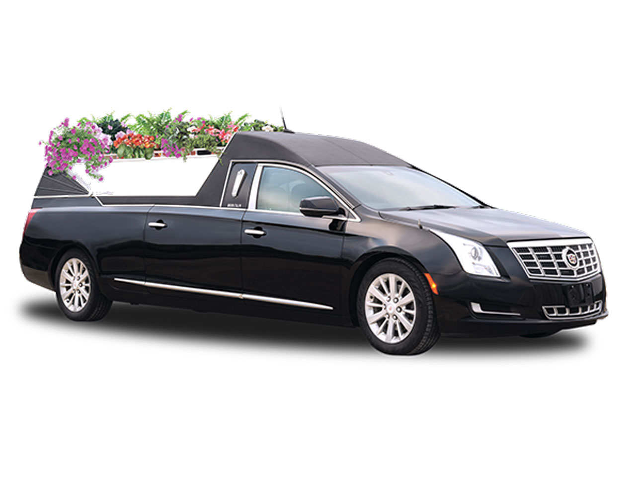 2019 Platinum Coach Cortege Flower Car 3